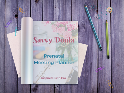 Savvy Doula Prenatal Meeting Planner