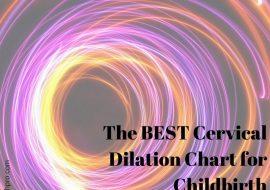 Childbirth Education Teaching Aid: Foam Cervical Dilation Chart